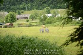 Anna Ulery Designs-115